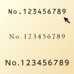 ナンバー種類・サイズ